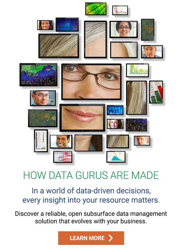 How Data Gurus are Made