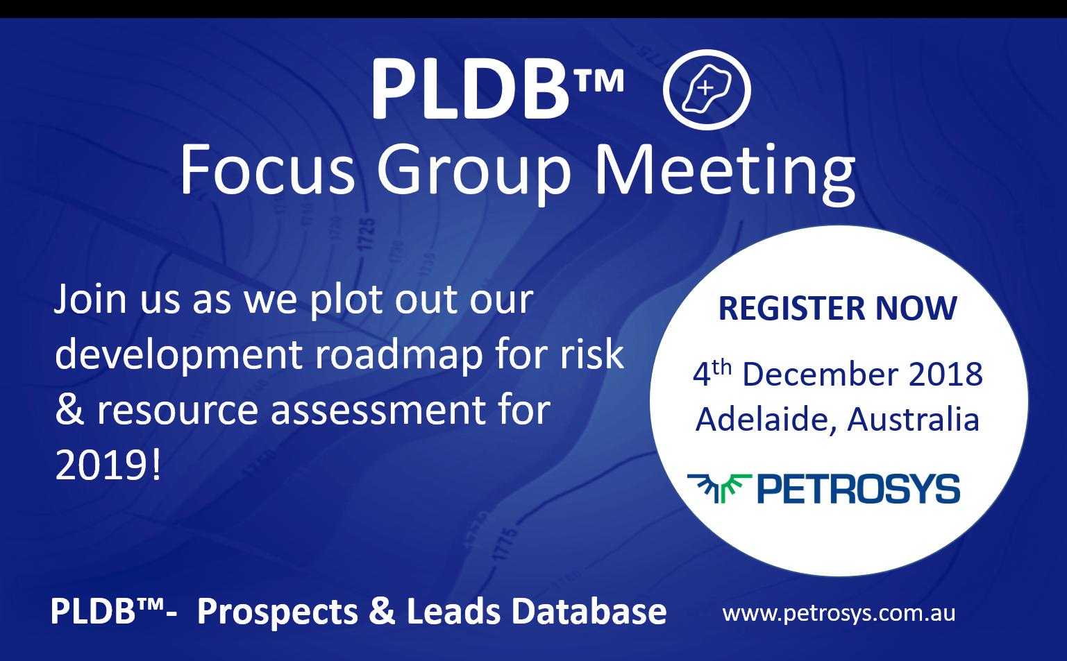PLDB Focus Group Meeting