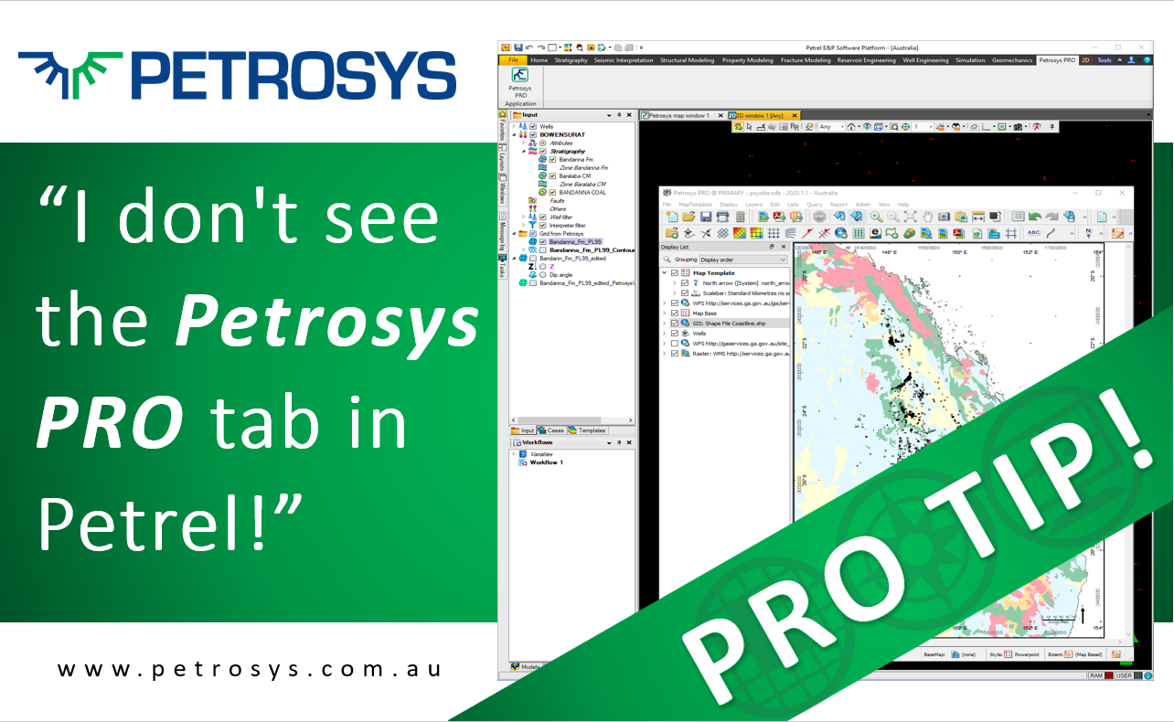 I don't see the Petrosys PRO tab in Petrel