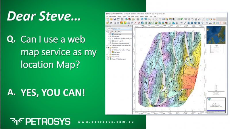 Can I use a web map service as my location map?
