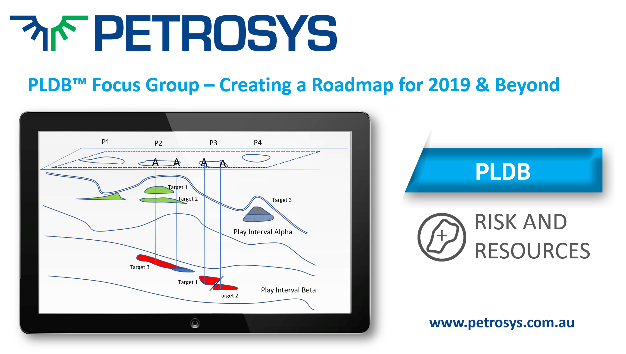 PLDB™ Focus Group - Creating a Roadmap for 2019 & Beyond
